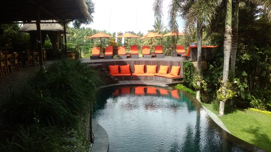 Soulshine Bali: Great pool, super clean and very nice to swim in with rice field views. Love this spot!