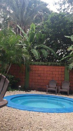 Hostel El Cactus : photo1.jpg
