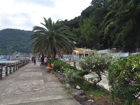 Izu Mito Sea Paradise: photo4.jpg