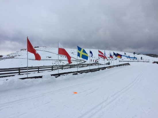 Snow Farm: photo1.jpg