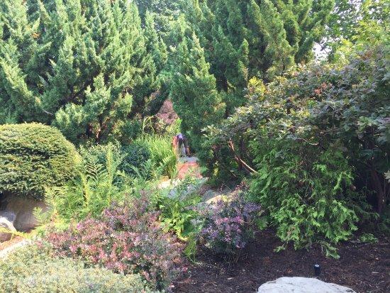 Nakusp, Canada: several nice gardens