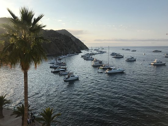 Catalina Island Casino: photo7.jpg