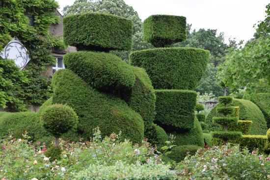 Kendal, UK: Et par af rigtig mange formklippede buske