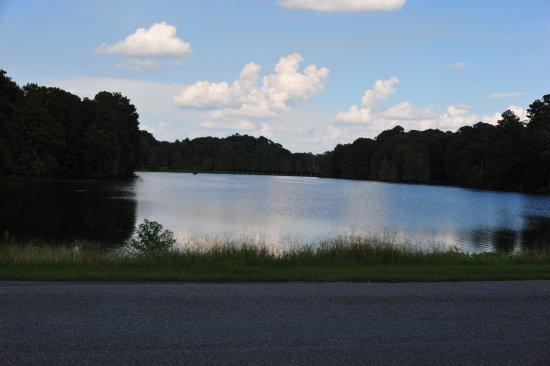 Lake Blackshear Resort and Golf Club Bild