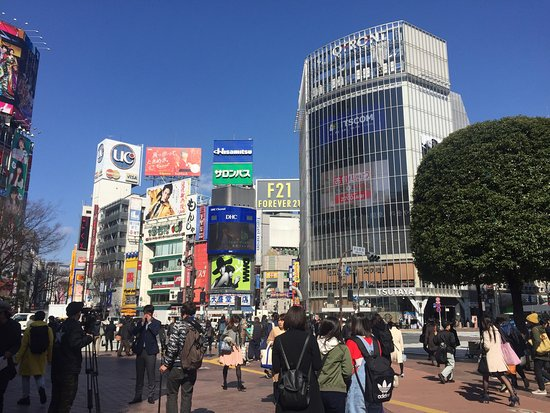 Hachiko: photo1.jpg