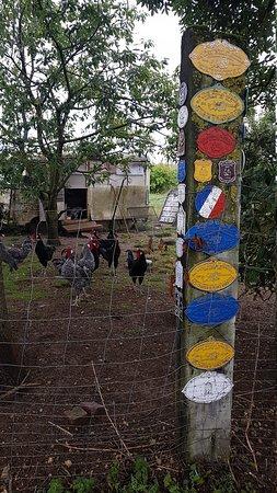 Aisne, Frankreich: PHOTO_20170812_165707_large.jpg
