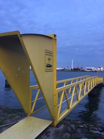 Vlaardingen, The Netherlands: photo6.jpg