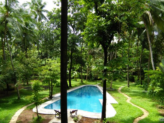 Botanique Updated 2018 Cottage Reviews Price Comparison Assagao India Tripadvisor