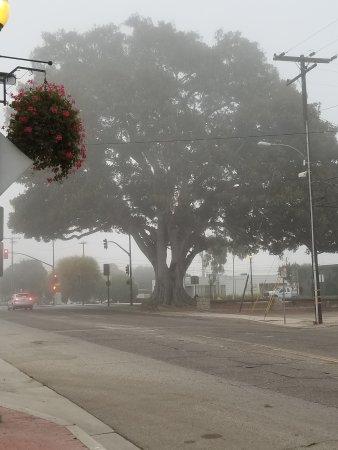 Santa Paula صورة فوتوغرافية