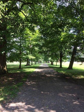Hyde Park, NY: photo2.jpg