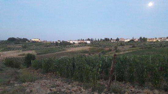 Borgo dei Lunardi: 20170805_210234_large.jpg