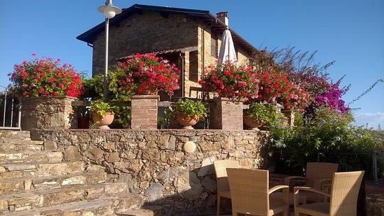 Massarosa, Italy: Blick von der Poolterrasse auf das Haus