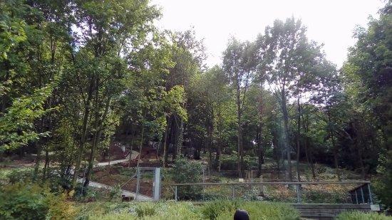 Brno, Czech Republic: plocha zahrady