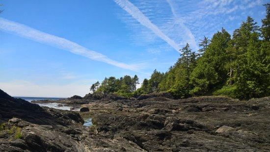 Port Renfrew, Canada: Botanical Beach am Juan de Fuca Trail ist ein Traum
