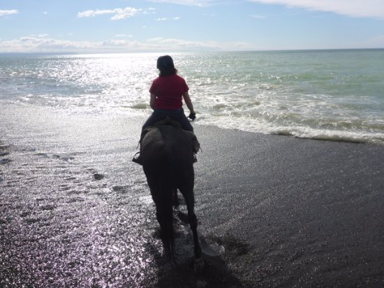 Clive, New Zealand: Awesome riding on the beach