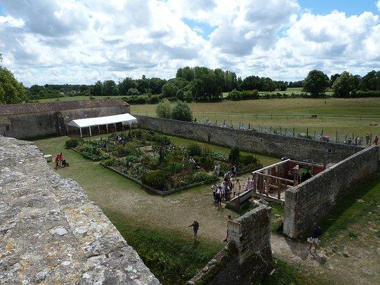 Château fort de Saint Jean d'Angle : vue du haut du château sur le jardin