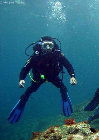 Divingmania: IMG_20170812_142214_large.jpg