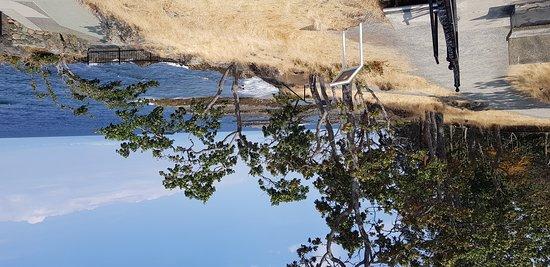 Woodgrove: 20170812_143029_large.jpg