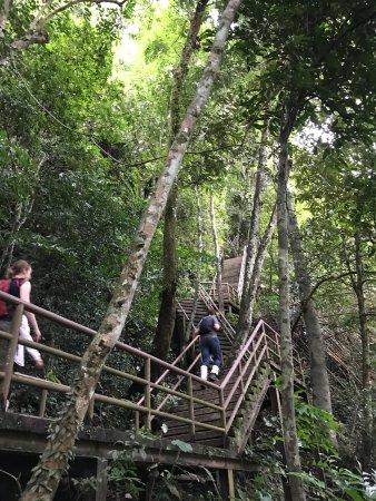 Khao Yai National Park, Tailandia: stairs