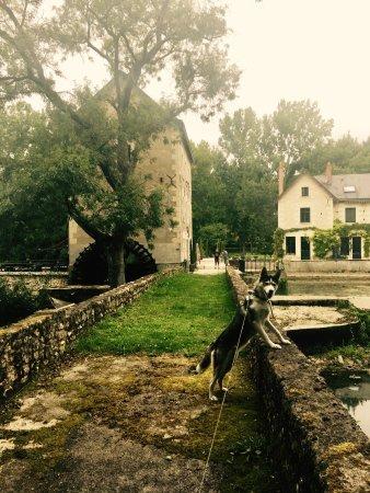 Sache, Frankrijk: photo0.jpg