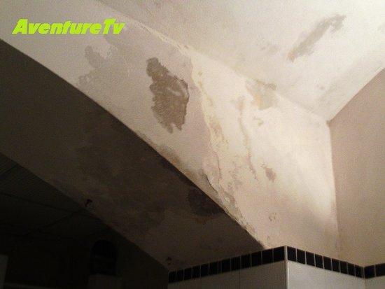 Hostel Emma: Moisissures et humidité abondante