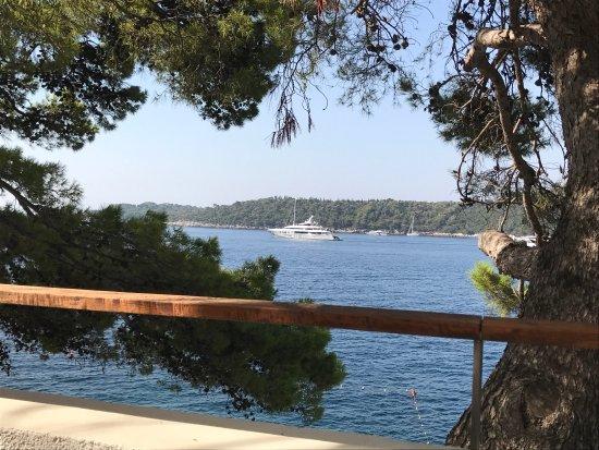 Villa Dubrovnik : photo3.jpg
