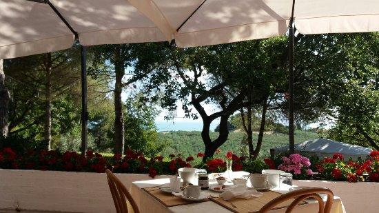 Colle Moro Resort - B&B Villa Maria: IMG-20170812-WA0002_large.jpg