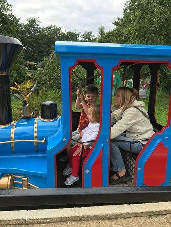 Reedham, UK: Train ride - bell ringing grandson.