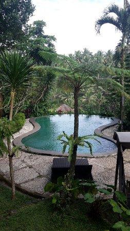 Graha Moding Villas: IMG-20170813-WA0008_large.jpg