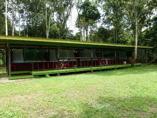 Kinabatangan District, Malasia: Open air long house jungle camp.