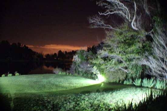 Kuils River, Sudáfrica: ....night scene of the beautiful gardens
