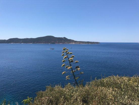 Trsteno, Croatia: Visita all'arboretum sulle tracce del trono di Spade