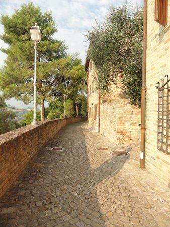 Montemaggiore al Metauro, Италия: DSC05125_large.jpg