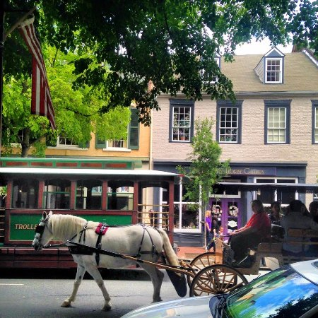 ‪Olde Towne Carriage Tours‬
