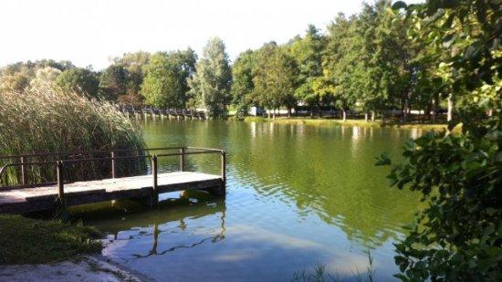 Joue-Les-Tours, Francia: Lac des bretonnières