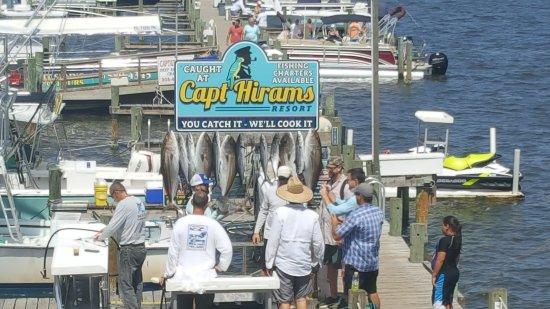 Capt Hiram's Resort: 20170812_151840_large.jpg