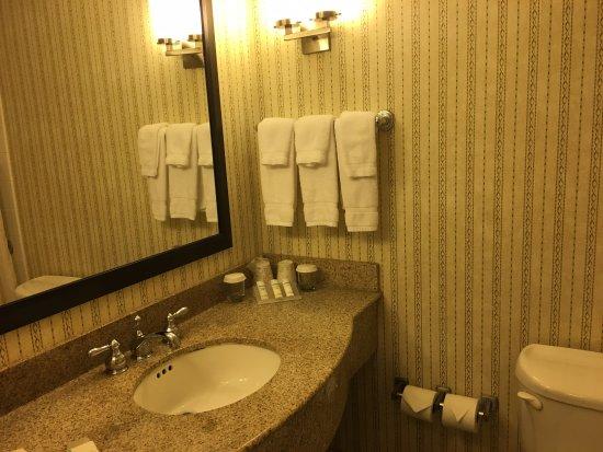 Hilton Garden Inn Green Bay: Ótimo banheiro