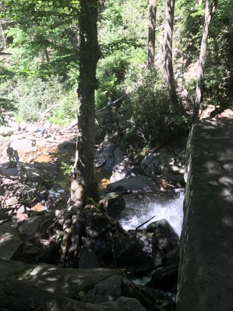 Laurel Falls : Great hike with kids and elderly. Paved. Take your time and enjoy the hike. It gets busy at wate