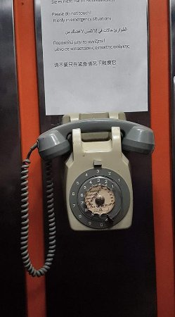 Cactus Hotel: The phone in the elevator