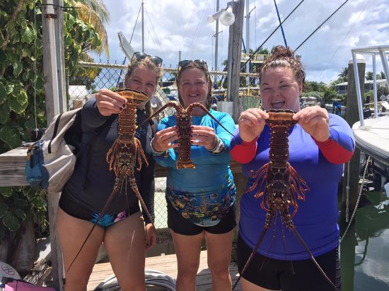 Tavernier, FL: Ashley, Nancy and Casey showing off their lobsters!