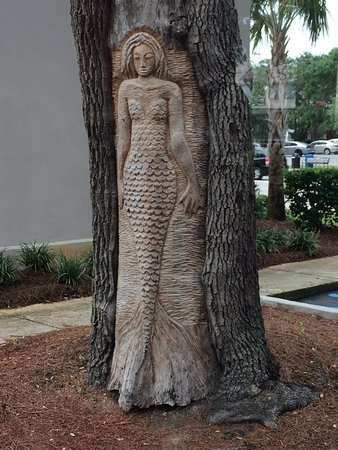 Saint Simons Island, GA: Engravings in trees which have a dead section stripped of bark due to lightning, etc.
