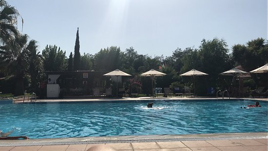 Guardavalle, İtalya: Calalandrusa Beach Resort