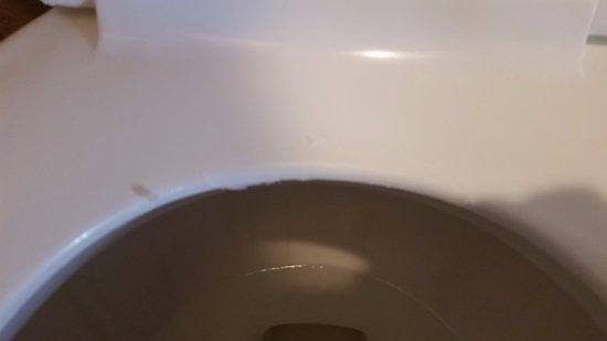 Laguna Riviera Beach Resort: cheap, peeling toilet seat