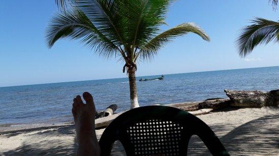 Hotel Salvador Gaviota : Faixa de areia