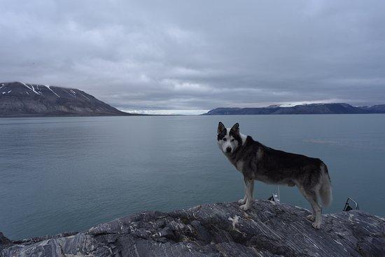 Longyearbyen, Norway: photo8.jpg