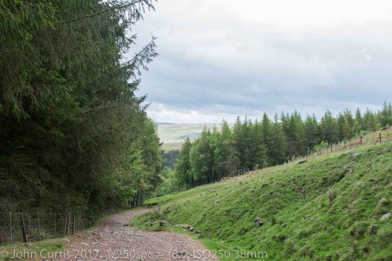 Ingram, UK: Path leading up to the Spout