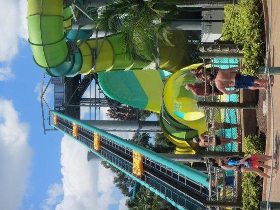 Adventure Island : 20170810165912_IMG_9176_large.jpg