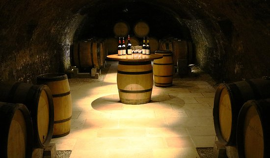 Saint-Jean-de-Losne, ฝรั่งเศส: Having a wine tasting in the historic Joseph Drouhin cellars was special.