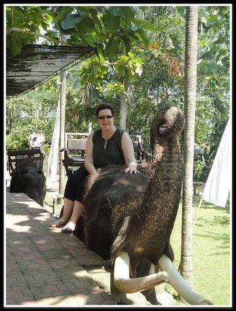 Manggis, Indonesien: FB_IMG_1476616979659_large.jpg