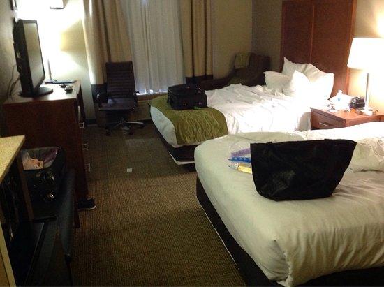 Comfort Inn & Suites Sacramento University Area: photo1.jpg